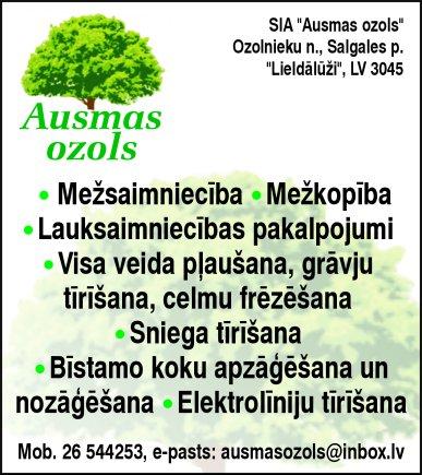 """""""Ausmas ozols"""", SIA reklāma Rīgas domes amatpersonu un politiķu kontaktinformācijas katalogā"""