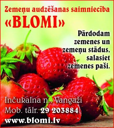 """""""Blomi"""", individuālais darbs reklāma Rīgas domes amatpersonu un politiķu kontaktinformācijas katalogā"""