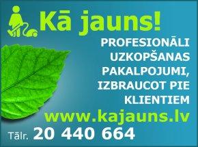 Feldmanis N., individuālā darba veicējs reklāma Rīgas domes amatpersonu un politiķu kontaktinformācijas katalogā