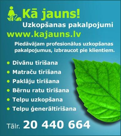 Feldmanis N., individuālā darba veicējs reklāma Latvijas pašvaldību amatpersonu un politiķu kontaktinformācijas katalogā