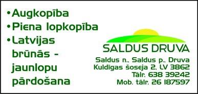 """""""Saldus Druva"""", SIA reklāma Latvijas pašvaldību amatpersonu un politiķu kontaktinformācijas katalogā"""
