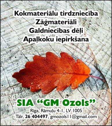 """""""GM Ozols"""", SIA reklāma Rīgas domes amatpersonu un politiķu kontaktinformācijas katalogā"""