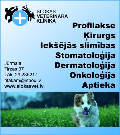 """""""Riarts"""", SIA reklāma Rīgas domes amatpersonu un politiķu kontaktinformācijas katalogā"""