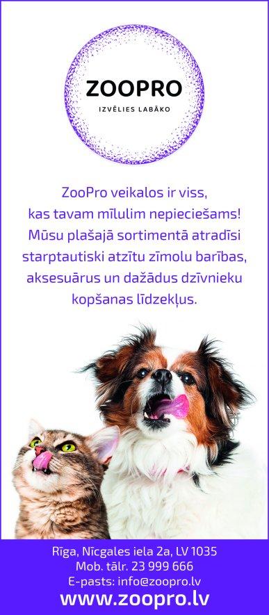 """""""Zoo Pro"""", SIA, Veikals reklāma Rīgas domes amatpersonu un politiķu kontaktinformācijas katalogā"""