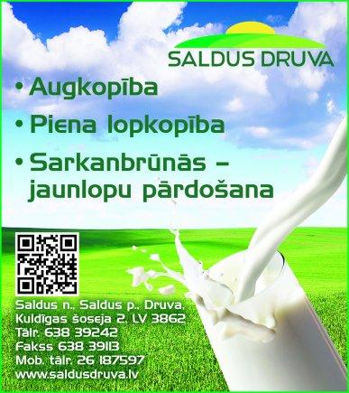 """""""Saldus Druva"""", SIA reklāma Saeimas un Valdības amatpersonu un politiķu kontaktinformācijas katalogā"""